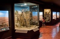 Natural%20History%20Museum%20of%20Crete